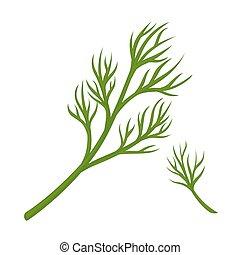 Green dill branch - Vector illustration of branch of green...