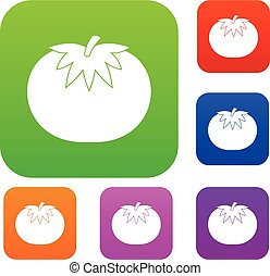 Tomato set collection - Tomato set icon in different colors...