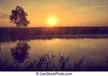 Photo with a summer sunrise by river and tree.