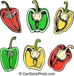 Colorful illustration halves of sweet pepper - Vector...
