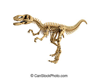T-rex skeleton isolated - 3d Render of a Tyrannosaurus Rex...