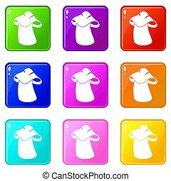 Boletus icons 9 set - Boletus icons of 9 color set isolated...