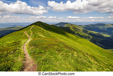 path through the grassy mountain ridge. beautiful summer...