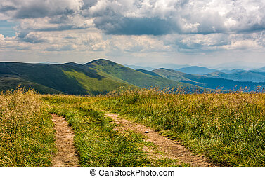 dirt road through grassy meadow on the ridge. beautiful...