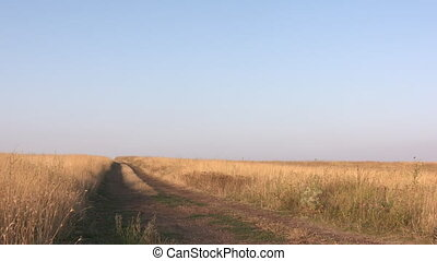 Dirt road across dry grassland in summer evening