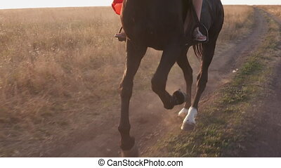 Horse's legs kicking up dust on dry soil. Horseback riding...