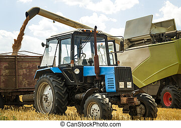 combine harvester loading seeds in to the tractor trailer -...