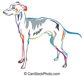 Colorful decorative standing portrait of Italian Greyhound...