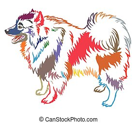 Colorful decorative standing portrait of Keeshound vector...