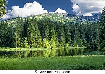 Tarn Vrbicke pleso in Low Tatras, Slovakia - Tarn Vrbicke...