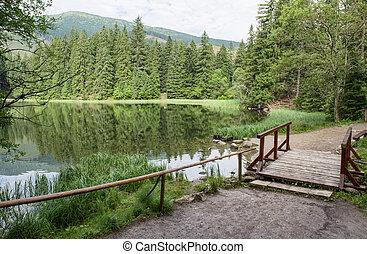 Lake in forest. Tarn Vrbicke pleso, Slovakia - Lake in...