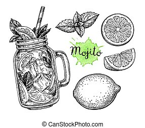 Mojito drink and ingredients. Retro style ink sketch...