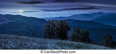 beautiful panorama of Carpathians at night - beautiful...