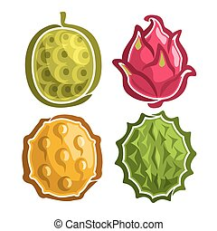 Vector Set icons of colorful exotic Fruits: 4 primitive...