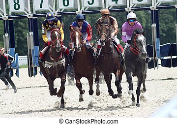 """Horse racing. - The race for the prize of the """"Dombai"""",..."""