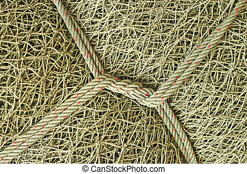 Fishing net with rope