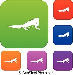 Iguana set collection - Iguana set icon in different colors...