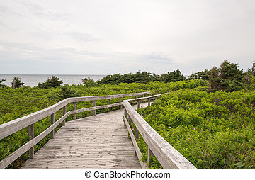 The boardwalk to the beach at Robinsons Island on PEI - The...