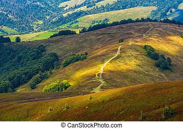 path down the grassy hillside to valley - path down the...