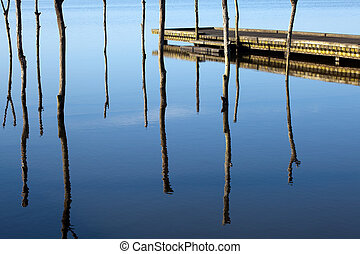 Jetty and sticks - Scenic view on a lake with jetty in...