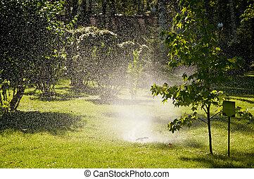 The lawn sprinkler spraying water