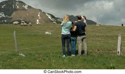 family standing over heels valley hill in woods taking...