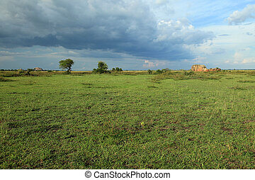 Meadow at Lake Anapa - Uganda, Africa - Lake Anapa in Uganda...