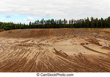sand pit in a pine forest - large sand pit in a pine forest