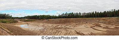 large sand pit in a pine forest, panorama