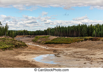 large sand pit in a pine forest