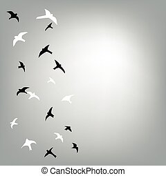 Birds flying in the sky background for the card or banner,...