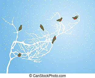 Bullfinches on a white branch in the winter. A vector illustration