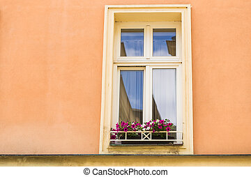 window with flower pots in classic building in Europe.
