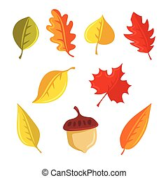 Autumn leaves and acorn vector set