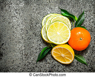 Slices of citrus fruits. Top view.
