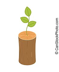 Sprout from logs. New life concept. young plant from Wooden...