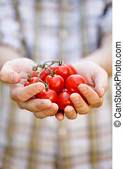 Young man with cherry tomatoes - Photo of young man in plaid...