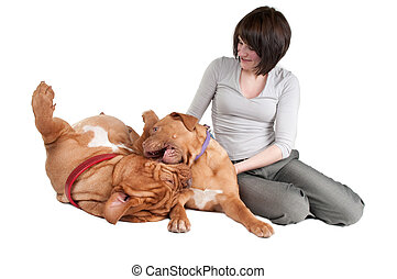 Girl and two dogs playing - Young woman and her two playing...