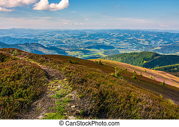 footpath on the edge of alpine hillside. beautiful view of...