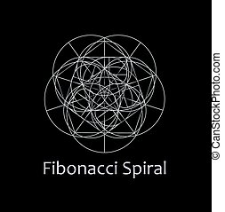 Fibonacci Spiral- The sacred geometry
