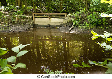 Old Water Gate in the Forest.