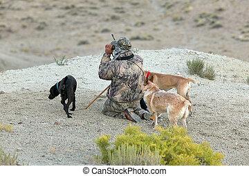 Camouflaged hunter and dogs in arid desert scene