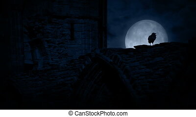 Crow On Old Castle Ruins At Night - Crow with full moon...
