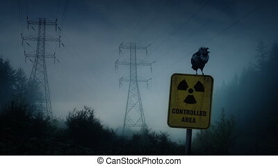 Crow Perches On Nuclear Radiation Sign - Crows squawks...