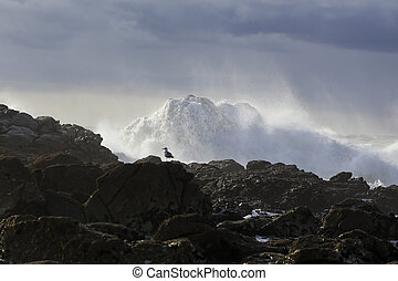 Cliff in a stormy evening - Cliff covered by flowing water...