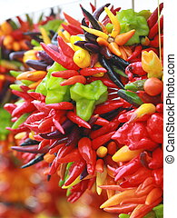 Chili peppers hang bunched. - Fire hot chili peppers hang...