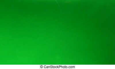 Light green liquid background with bubbles. Abstract...