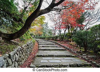 Steps leading up with autumn colored leaves in Arashiyama,...