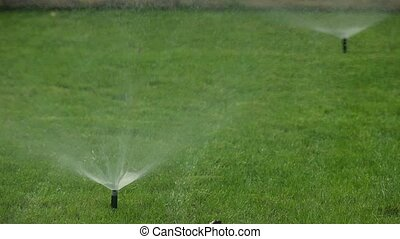 Spray watering lawn Garden automatic Irrigation system