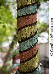 ökologie, natur, park, abstrakt, baum, farbe, stamm